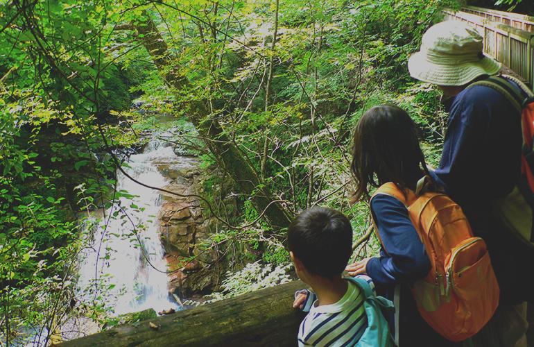 親子で自然探索